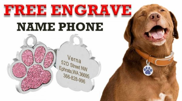shows the use of dog tags personalized.