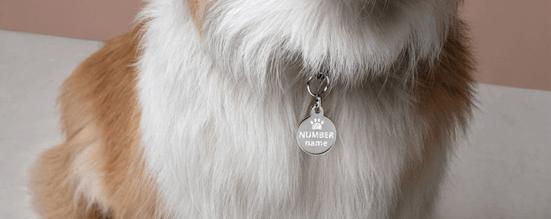 Dog Tag for Dog