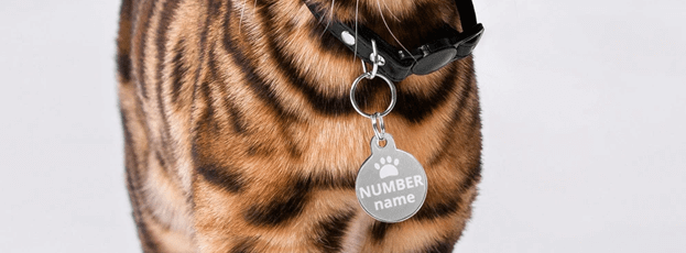 Dog tag for pet